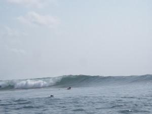 Bali_0231